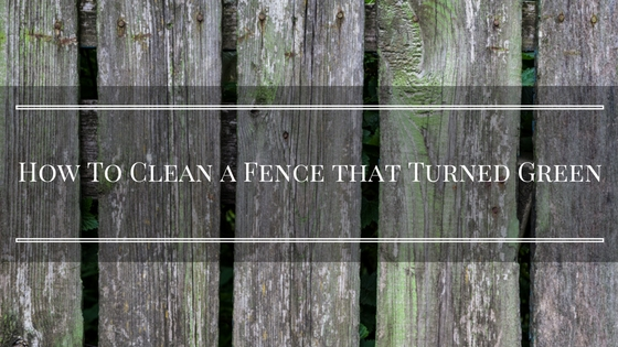 How To Clean a Fence that Turned Green