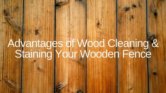 Advantages of Cleaning & Staining Your Wooden Fence